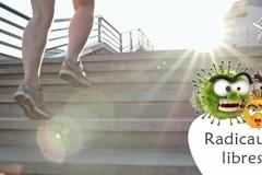 Radicaux libres et vieillissement (comment maintenir son équilibre bioénergétique?)